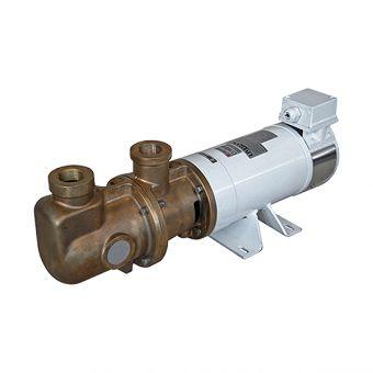 Pompe à rotor excentré, corps de pompe en bronze